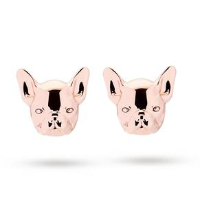 Ted Baker Rose Gold Plated Pup Bulldog Stud Earrings
